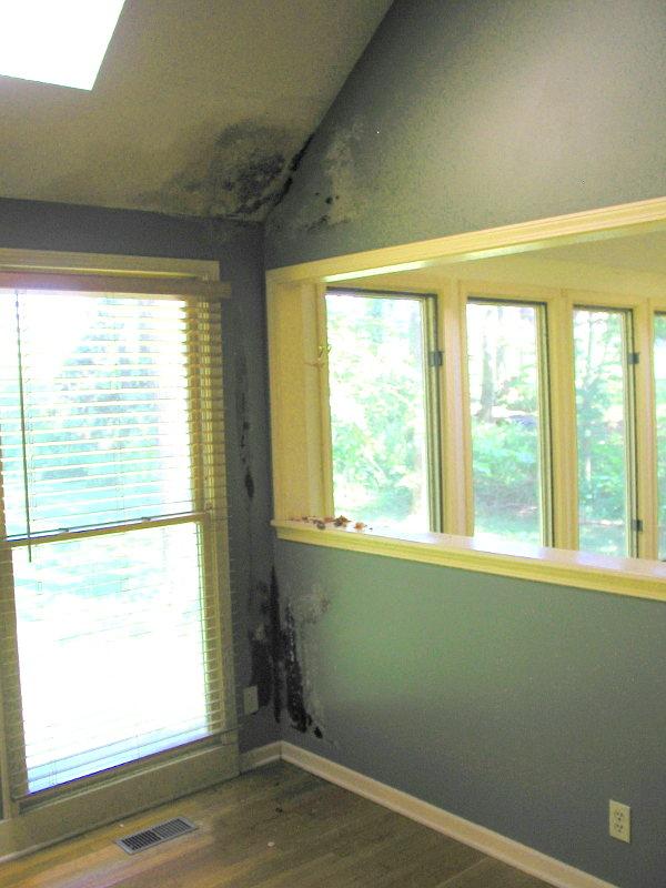 black mold DIY fixer-upper roof leak